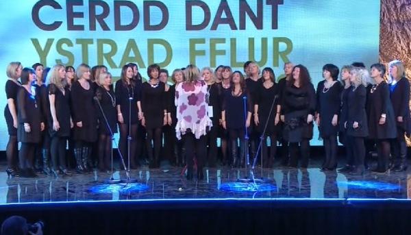 Gŵyl Cerdd Dant 2013